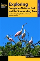 Exploring Everglades National Park And The Surrounding Area