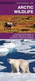 Arctic Wildlife Pocket Naturalist Guide