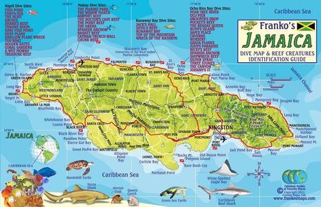 Jamaica Franko Reef Card