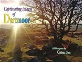 Captivating Images Of Dartmoor