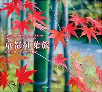 Amazing Autumn Colors In Kyoto