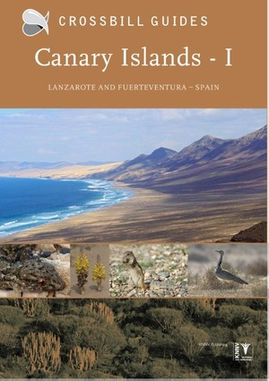 Canary Islands - I Lanzarote and Fuerteventura Spain