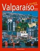 Valparaiso Souvenir Chile - Kactus
