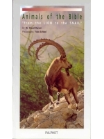 Animals Of The Bible - Israel