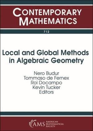 Local And Global Methods In Algebraic Geometry