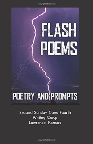 Flash Poems