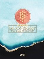 Moonsight Planner - Moon Phase Biz Calendar - 2019 (12-month Weekly- Turquoise)
