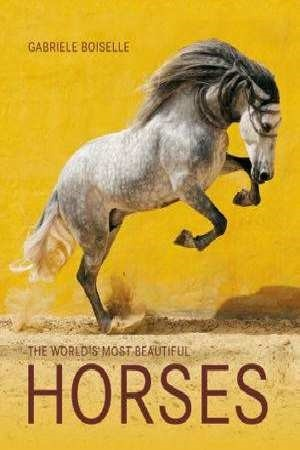 The world's most beautiful horses