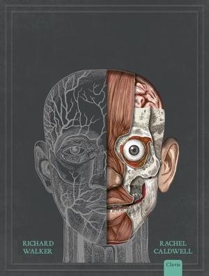 Het menselijk lichaam ( Pop-up)