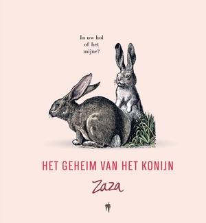 Het geheim van het konijn