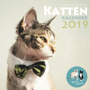 Kattenkalender 2019