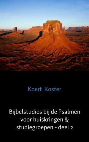Bijbelstudies bij de Psalmen voor huiskringen & studiegroepen - deel 2
