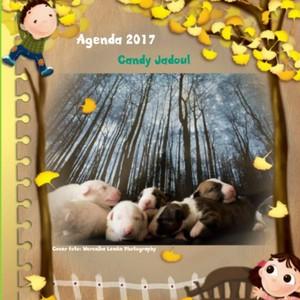 Agenda klein bull terrier friends - 2017