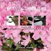Satsuki Bonsai