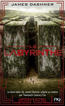 L'epreuve T.1 ; Le Labyrinthe