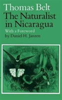 Naturalist In Nicaragua
