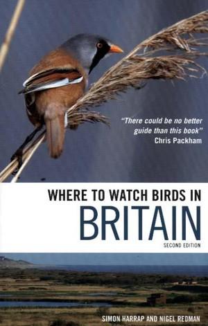 Where To Watch Birds In Britain