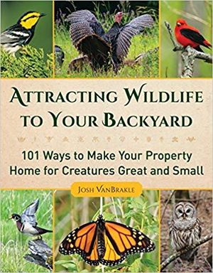 Attracting Wildlife To Your Backyard