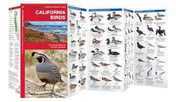 Californian Birds Waterford Press