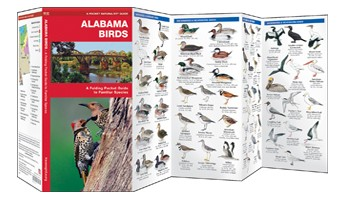 Alabama Birds Waterford Press