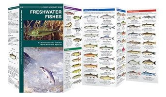 Freshwater Fishes Waterford