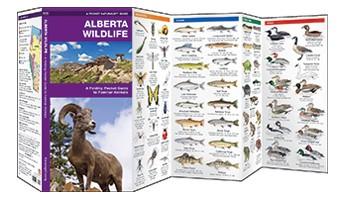 Alberta Wildlife Waterford