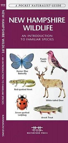 New Hampshire Wildlife Waterford Press