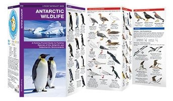 Antarctica Wildlife Waterford Press
