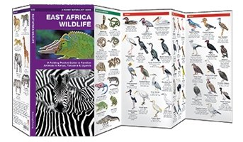 East Africa Wildlife Waterford Press