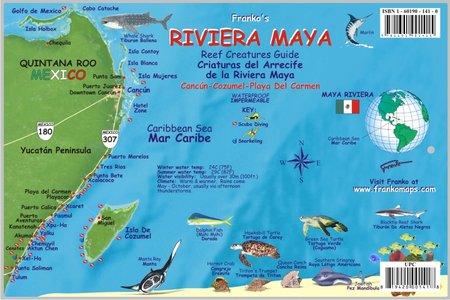 Maya Riviera Reef Creatures Franko's