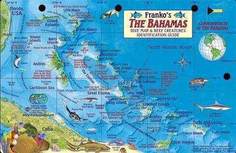 Bahama's Reef Creatures Franko' S