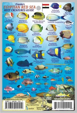 Egyptian Red Sea Reef Guide Mini Map