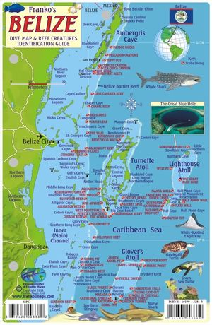 Belize Franko Reef Card