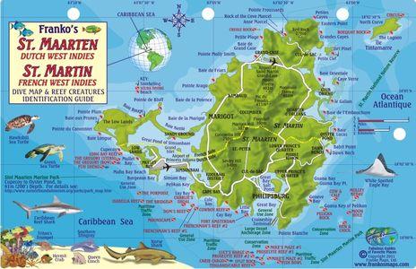 St Maarten Reef Creatures Franko