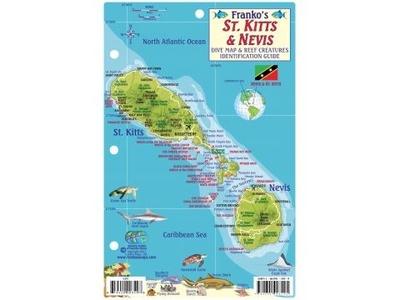 St Kitts & Nevis Reef Creatures Franko