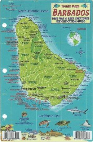 Barbados Reef Creatures Franko's