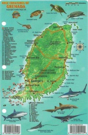 Grenada Reef Creatures Franko' S