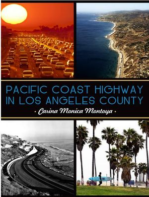 Pacific Coast Highway In Los Angeles Cou