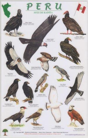 Peru Roofvogels A4 Gelamineerde Kaart