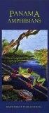Panama Amphibians Uitvouwkaart