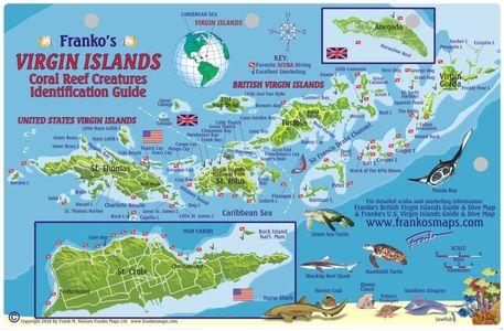 Virgin Islands Reef Creatures Franko