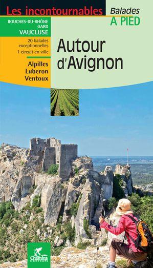 Avignon autour à pied