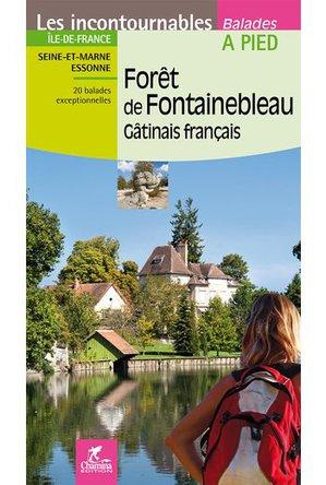 Forêt de Fontainebleau - Gâtinais français à pied