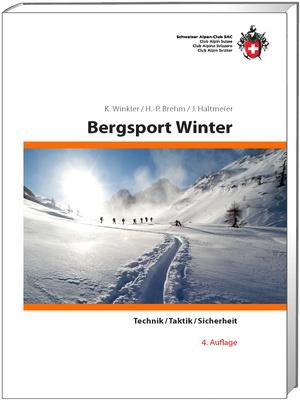 Bergsport Winter Technik,Taktik,Sicherheit
