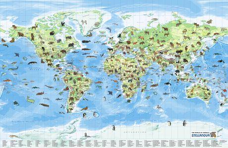 Kinderkaart Gb World Of Animals Sn Gepl.
