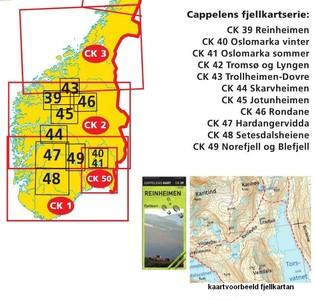 Ck39 Reinheimen Fjellkart 1:50.000
