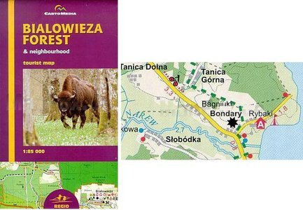 Bialowieza Forest 1:85.000