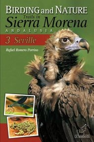 Birding & Nature Trails Sierra Morena 3