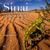 Sinai Landscape & Nature In Egypt's Wild