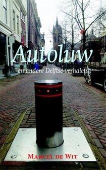 Autoluw en andere Delftse verhalen